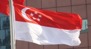 flag_of_singapore_photo