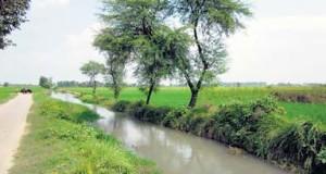 N-CANAL
